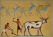 Laden Donkeys and Ploughing, Tomb of Djar