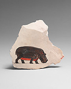 Artist's Painting of a Hippopotamus