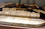 Sarcophagus fragments (380), Senemut