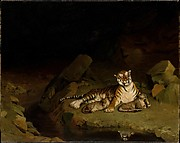 Tiger and Cubs