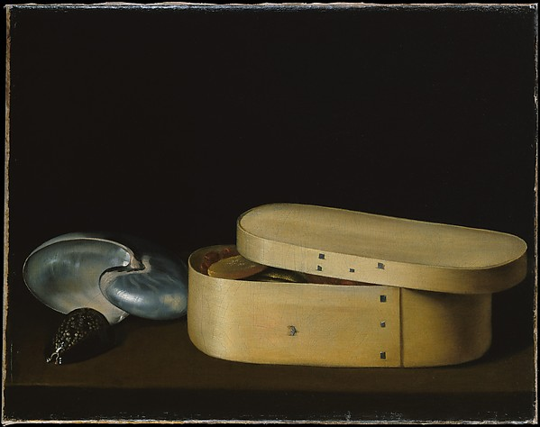 Still Life with a Nautilus, Panther Shell, and Chip-Wood Box