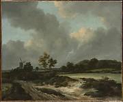Grainfields