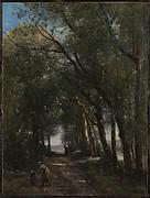 A Lane through the Trees