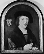 Portrait of a Young Man of the Van Steynoert Family
