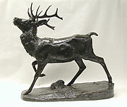 Standing Stag (Cerf debout)