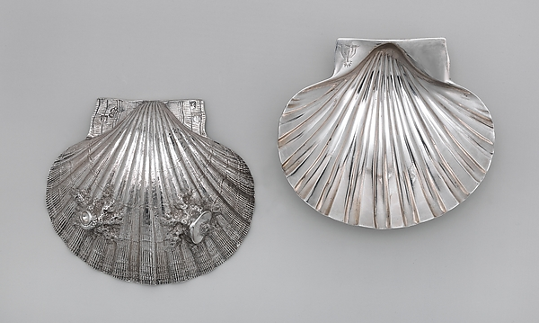 Pair of scallop shells