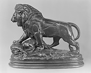 Lion with Boar