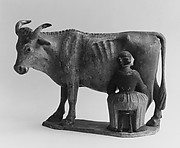 A cow being milked by a girl