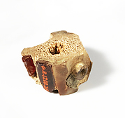 Bone and amber segment from a bronze fibula (safety pin)