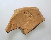 Mould fragment