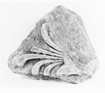 Marble architectural fragment with palmette from the Temple of Artemis at Sardis