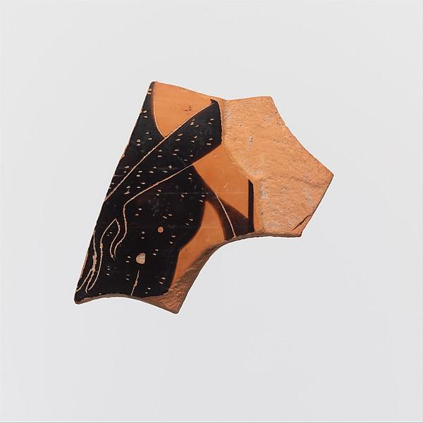Fragments of a terracotta amphora (jar)