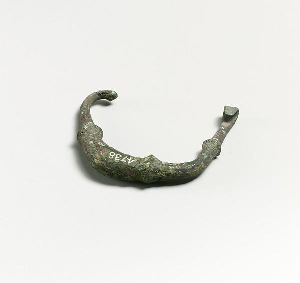 Fibula, fragment