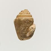 Terracotta shell