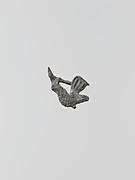 Statuette of a cock, 2?