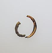 Earring fragment