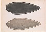 Bengal River Fish