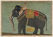 Portrait of the Elephant  &#39;Alam Guman