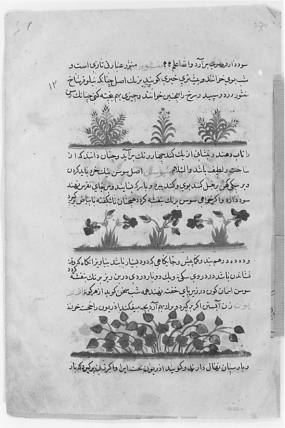 Folio from a Dispersed Nuzhatnama