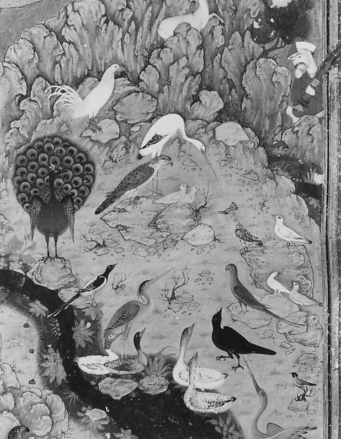 """The Concourse of the Birds"", Folio from a Mantiq al-tair (Language of the Birds)"
