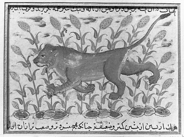 Folio from a Dispersed Nuzhatnama