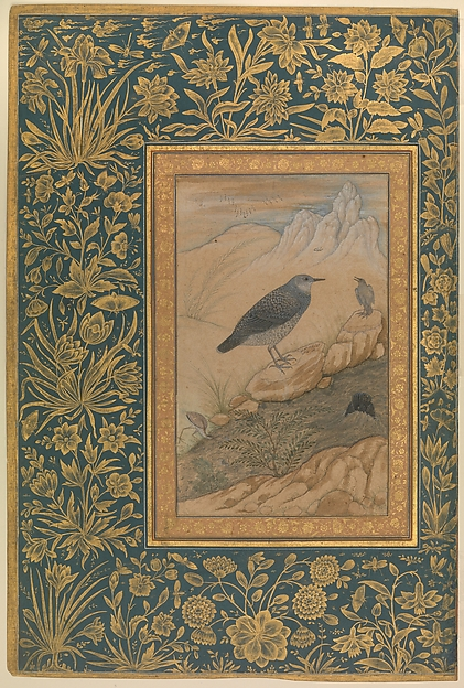 """Diving Dipper and Other Birds"", Folio from the Shah Jahan Album"