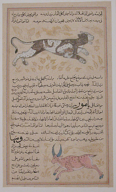 Folio from a `Aja&#39;ib al-Makhluqat wa Ghara&#39;ib al-Mawjudat (The Wonders of Creation and the Oddities of Existence)