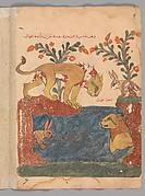 """""""The Hare, the Lion, and the Well"""", Folio from a Kalila wa Dimna"""