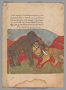 """The Lion and the Elephant Fighting"", Folio from a Kalila wa Dimna"