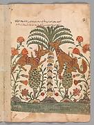 """Kalila Upbraiding Dimna"", Folio from a Kalila wa Dimna"