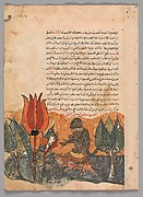 """The Tortoise Ferries the Monkey"", Folio from a Kalila wa Dimna"