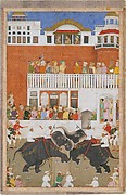 """Shah Jahan Watching an Elephant Fight"", Folio from a Padshahnama"
