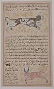 Folio from a `Aja'ib al-Makhluqat wa Ghara'ib al-Mawjudat (The Wonders of Creation and the Oddities of Existence)