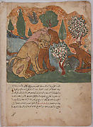"""The Lion king, With his Mother, Receives Dimna"", Folio from a Kalila wa Dimna"
