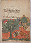 """The Fox and the Drum"", Folio from a Kalila wa Dimna"