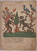 """The Birds and the Monkeys with the Glow Worm"", Folio from a Kalila wa Dimna"