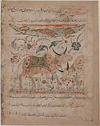 """Oxen amongst Foliage"", Folio from a Manafi' al-Hayawan (On the Usefulness of Animals)"