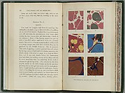 The Whole Art of Marbling as Applied to Paper, Book Edges, etc.