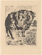Ram, from <i>Picasso: Original Etchings for the Texts of Buffon</i>