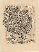 Turkey, from <i>Picasso: Original Etchings for the Texts of Buffon</i>