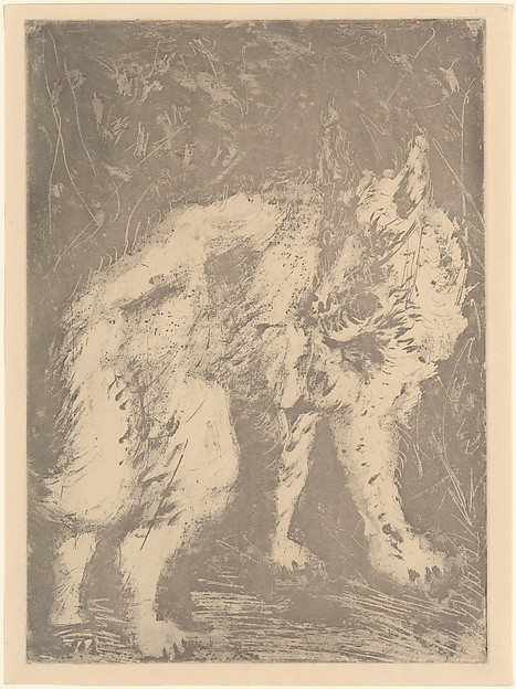 Wolf, from <i>Picasso: Original Etchings for the Texts of Buffon</i>