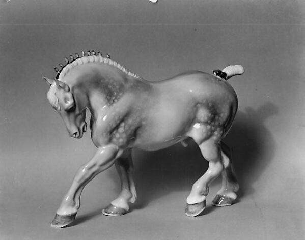 Percheron Stallion