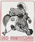 No Smoking (Large)