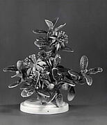 Plants (Mexican feijoa)