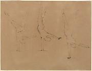 Three Studies of an Acrobat