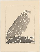 Vulture, from <i>Picasso: Original Etchings for the Texts of Buffon</i>