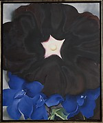 Black Hollyhock, Blue Larkspur