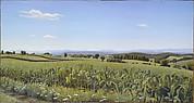 Cambridge Corn