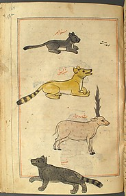 `Aja'ib al-Makhluqat wa Ghara'ib al-Mawjudat (The Wonders of Creation and the Oddities of Existence)
