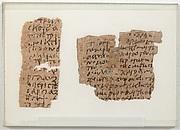 Papyri Fragments of a List of Bird Names